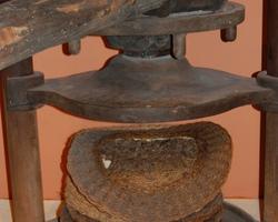 Vert d'Olive - La Londe-les-Maures - Galerie photo - Mise en ligne de notre site Internet !